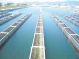 浅析城市供水行业存在问题、发展趋势与立法建议